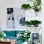 Have Indoor Garden Ideas and add colour to your Home