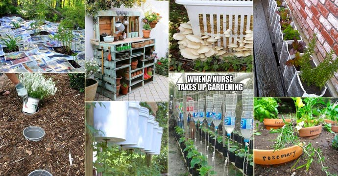 23 insanely clever gardening ideas on low budget QSSOAGY