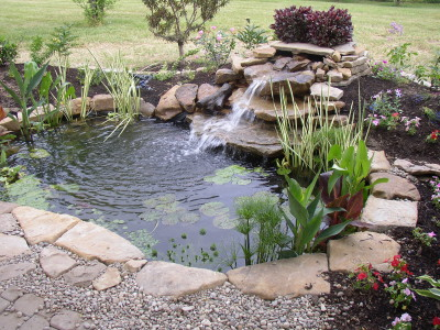 backyard ponds: a quick springtime maintenance and care guide WPIAOIV