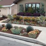drought resistant landscaping drought tolerant landscaping orange county,