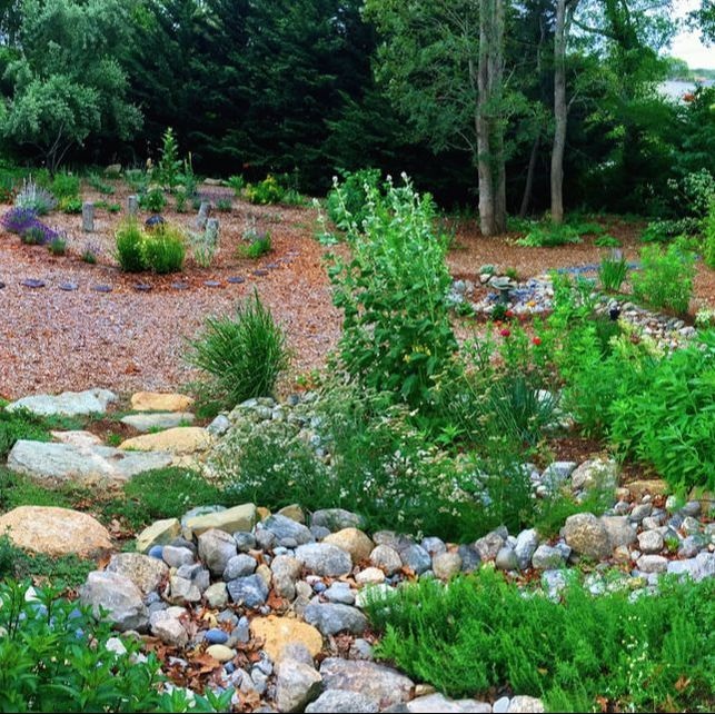 edible landscaping edible landscapes of cape cod - home CURLLAU