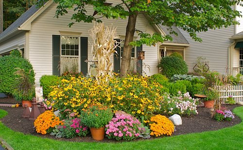 fall gardening ideas, fall gardening tips garden design calimesa, ca KAVALAQ