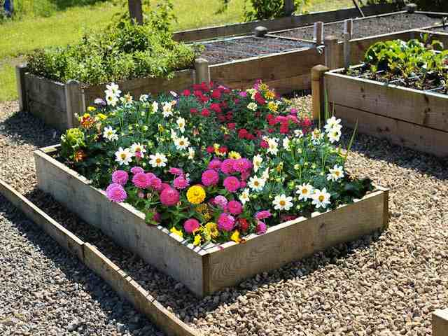 flower beds 9 inch high timber raised flower
