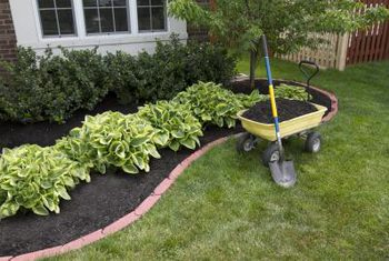 flower beds prevent weed seeds from reaching the