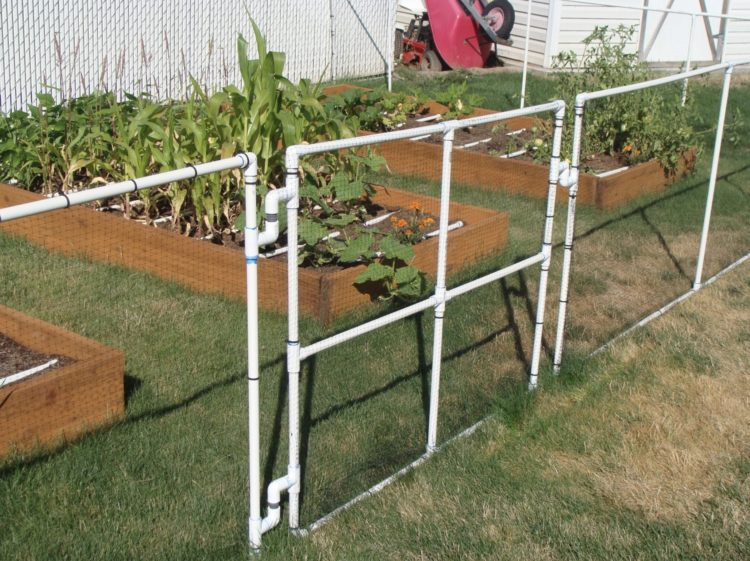 garden fencing ideas diy garden fence ideas LPFERYL