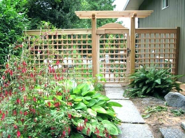 garden trellises wonderfull design garden trellis ideas trellises outdoor metal SKODOMP