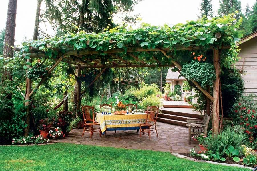 grape arbor but when the time comes you will be able to enjoy the BUIFOYH