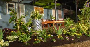 landscaping ideas for backyard dycr304h_byl-5-backyard-flower-beds_s4x3 OUSNTHG