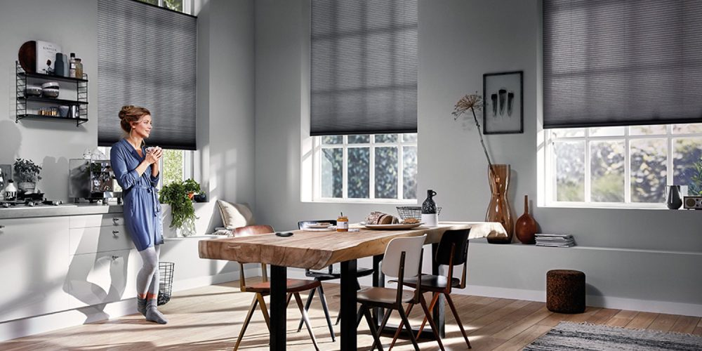 motorized blinds versatility, convenience, and style are a