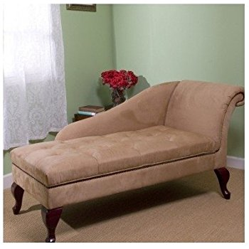 Amazon.com: Chaise Chair Lounge Sofa with Storage for Living Room or