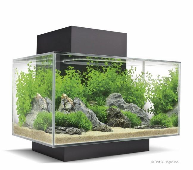Aquarium 200 Gallons A Vendre