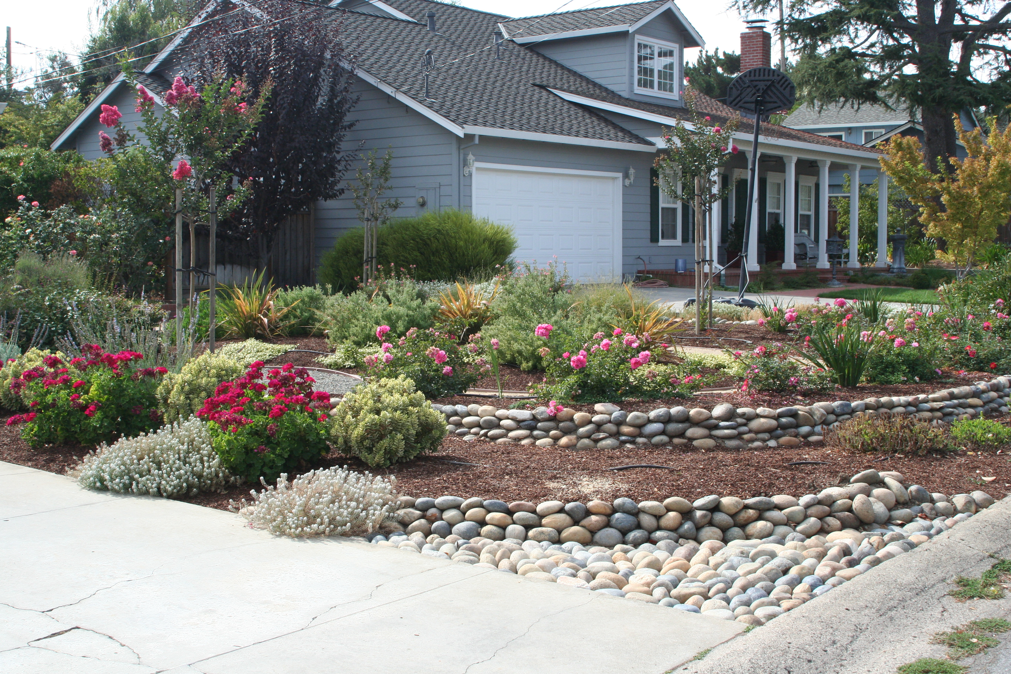 ... drought resistant landscaping 11 exclusive design the gardeners  anonymous blog BXSXNVC