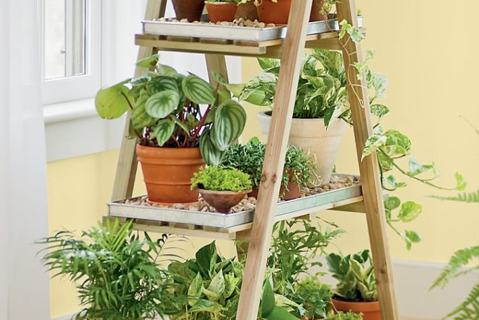 13 peaceful diy indoor garden ideas that brings the outdoors in WOUHDPT