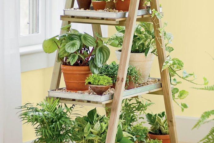 13 peaceful diy indoor garden ideas that brings the outdoors in WOUHDPT