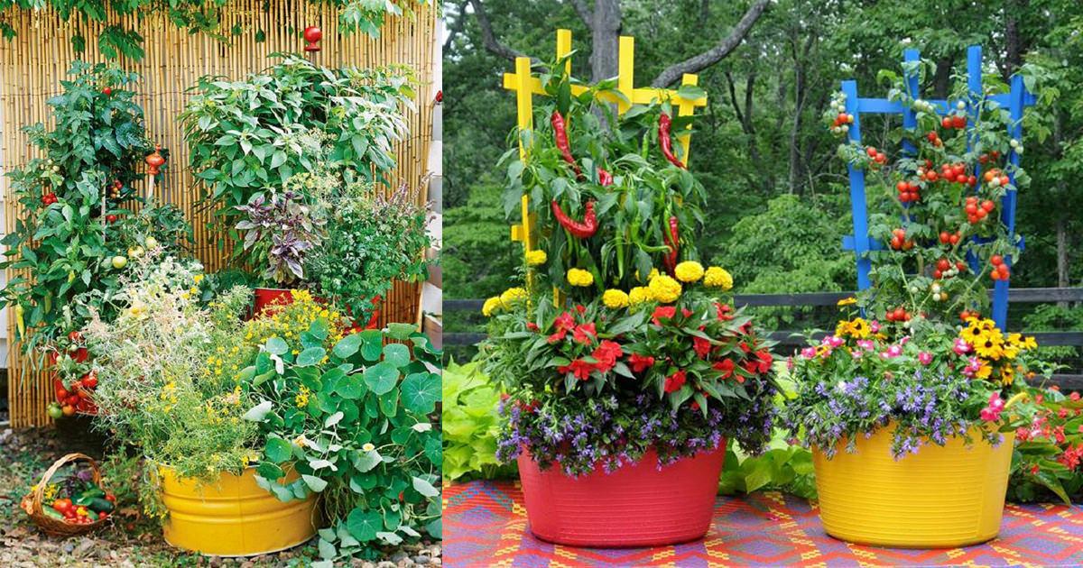 15 stunning container vegetable garden design ideas u0026