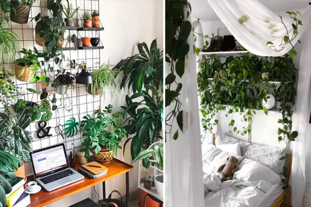 18 inspiring indoor gardens for anyone who doesnu0027t have a backyard SKYWICB
