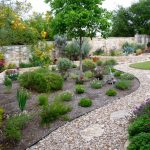 The requirements necessary for drought resistant landscaping