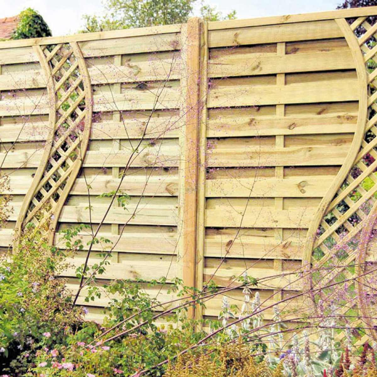 backyard fence ideas climbers wall wood fence TKBZBDT