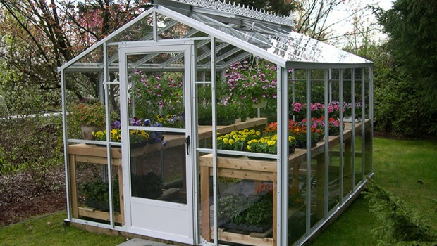 backyard greenhouse greenhouse gab | letu0027s get growing! NTPZDQD