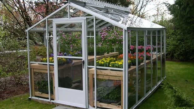 backyard greenhouse greenhouse gab | letu0027s get growing!