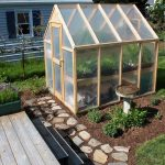 Set up Backyard Greenhouses to grow vegetables