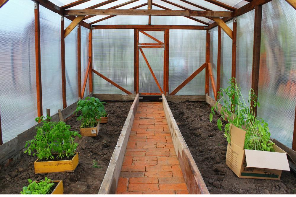 backyard greenhouse ZLGGOFP