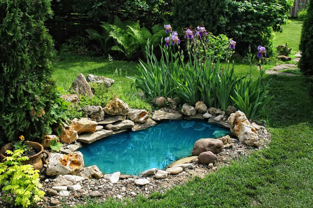 backyard ponds 15 breathtaking backyard pond ideas - garden lovers club YWIEQEM