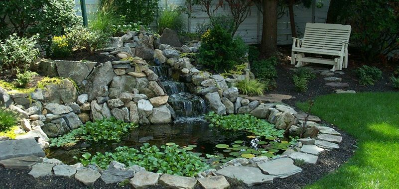 backyard ponds 6 essential elements of any backyard pond HJYBHDG