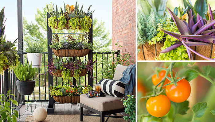 balcony garden ideas balcony garden with containers and vertical planter. BILABYP
