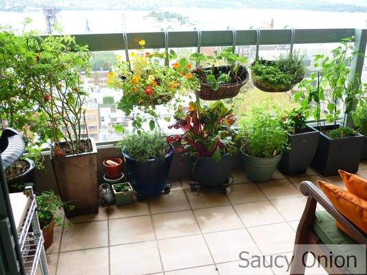 balcony garden ideas balcony gardening, source: saucyonion.files.wordpress.com HGBMPNS