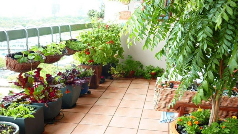 balcony garden ideas balcony herb garden pots small balcony garden design ideas balcony garden AESOLWR