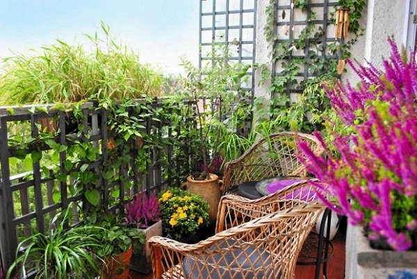 balcony garden ideas tip 5 balcony garden design tips (4)_mini WMLTCLS