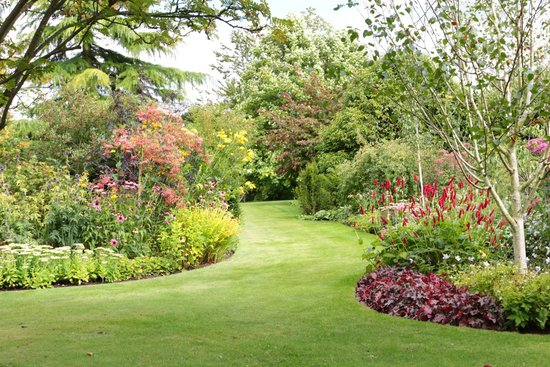 bluebell cottage gardens: one of the lovely pathways