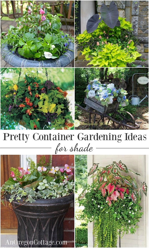 container gardening ideas 12 beautiful ideas for shade-loving flower planters. OUSSLGC