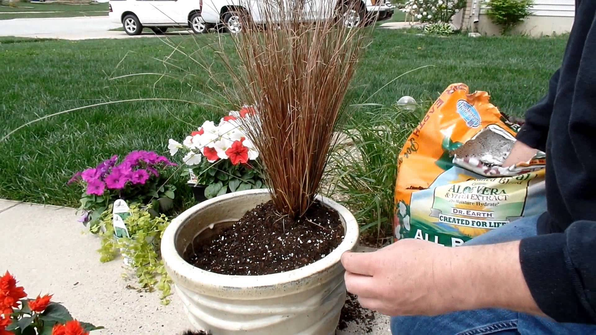 container gardening ideas container gardening idea | fun with flowers - youtube VRNVXPW