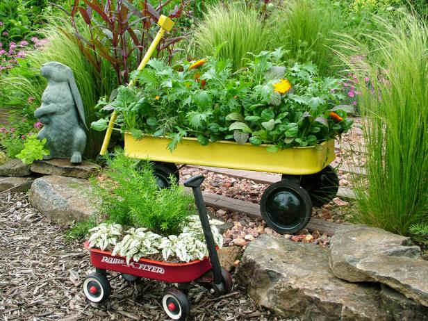 container gardening ideas, pictures u0026 videos | hgtv