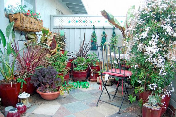 container gardening ideas | small space gardening | houselogic WTMKFNT