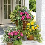 How can you benefit from container gardening Ideas ?