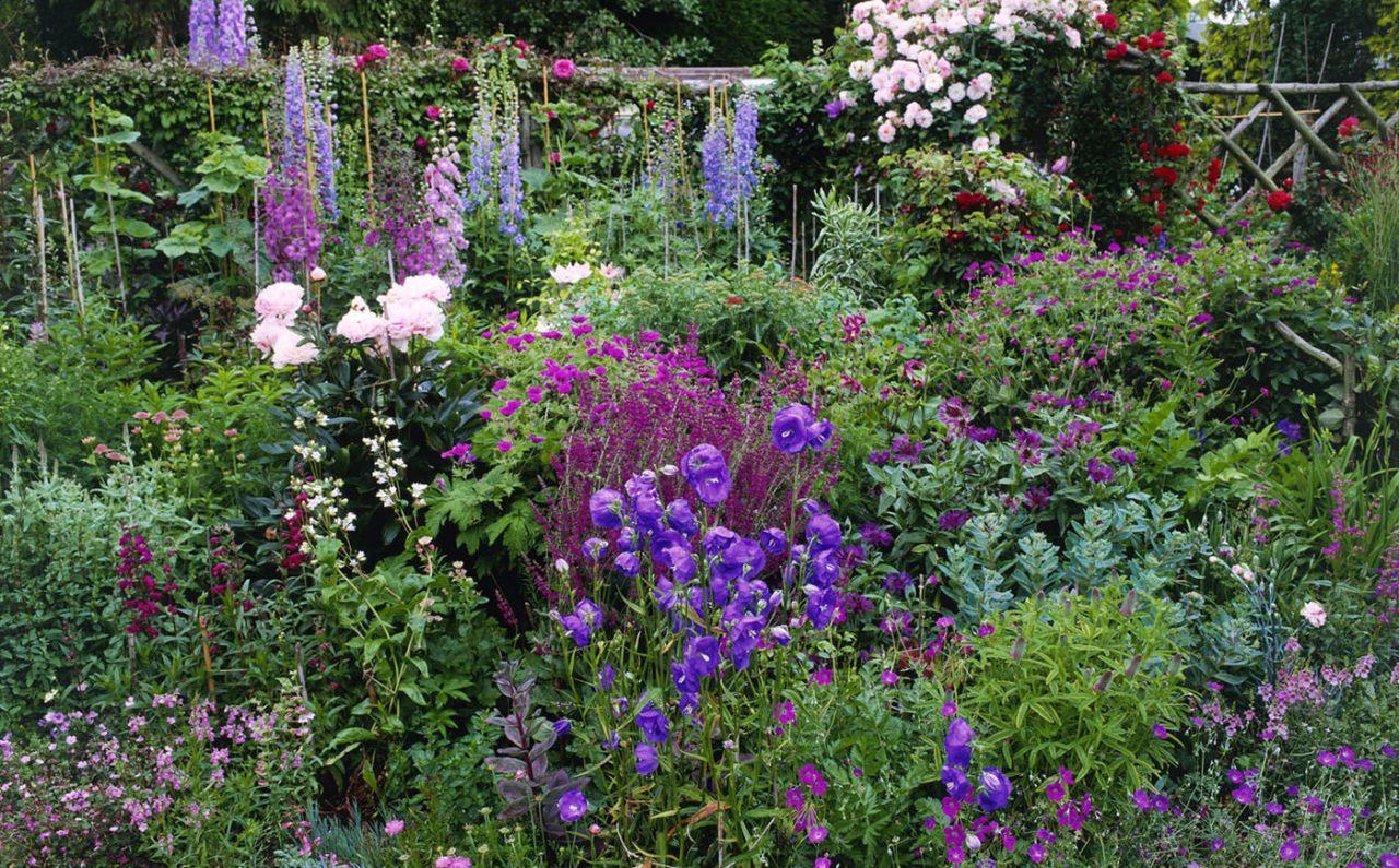 cottage garden cottage-garden-flower-border CGJZIXT