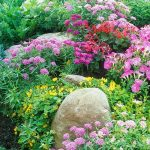 The cottage garden practice and its usefulness to our time