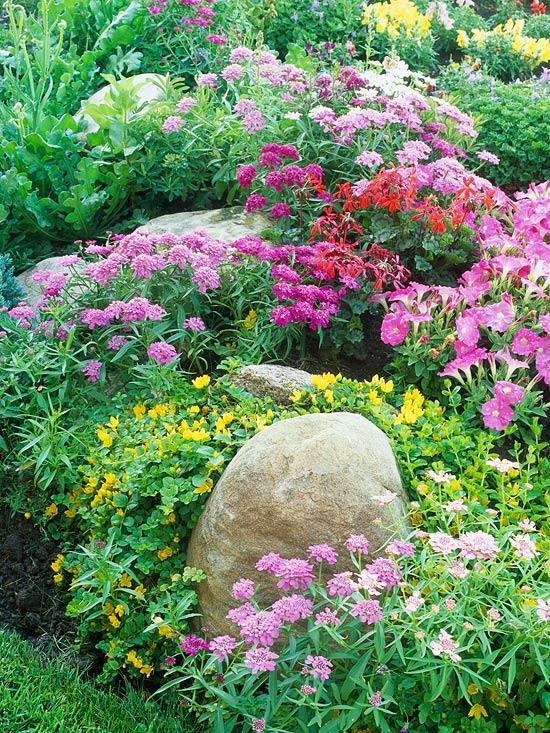 cottage garden sip932613b_05312006 YPMKDEQ