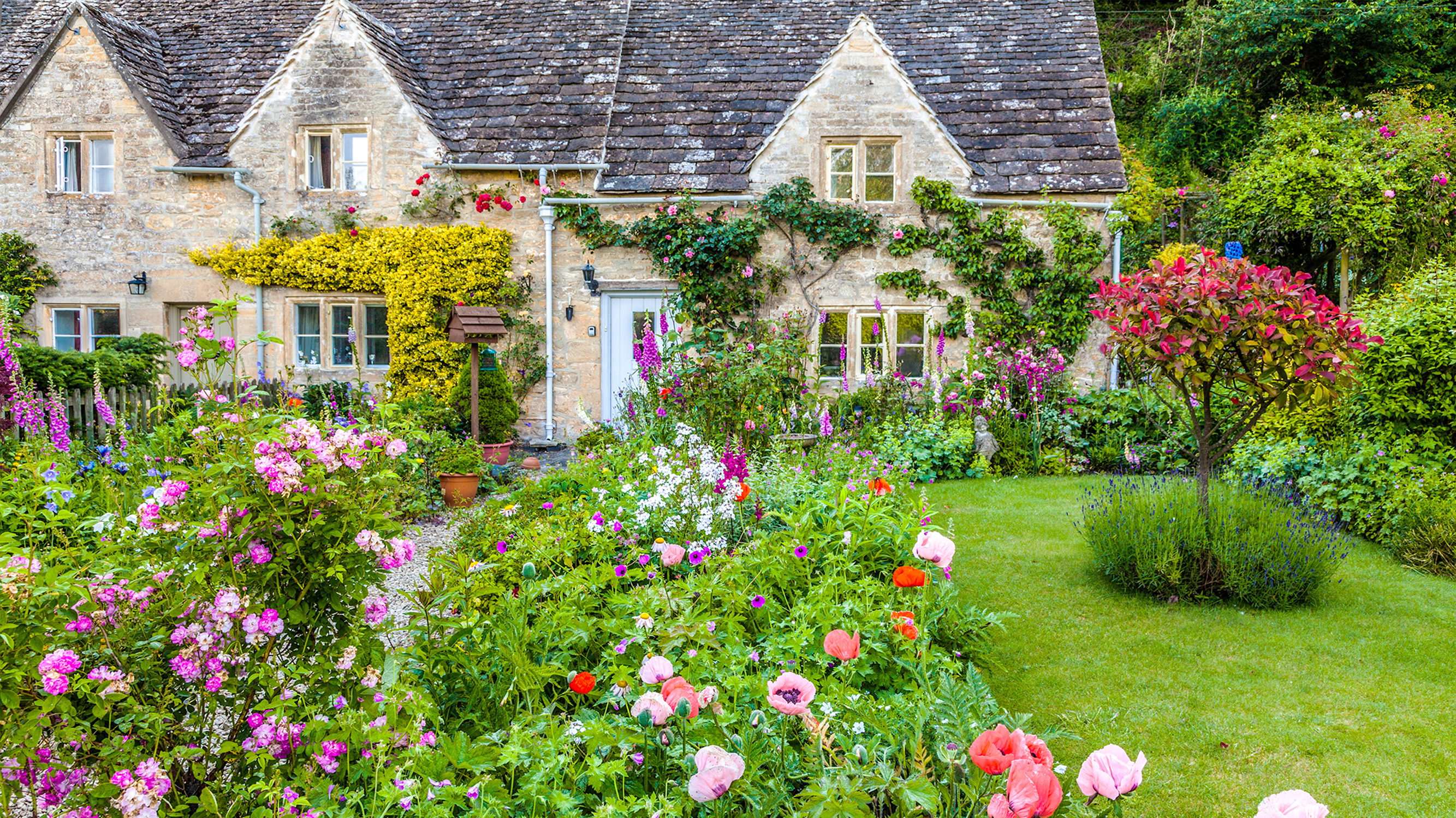 cottage garden the classic cottage country garden is largely a modern creation, with an IHJTTON