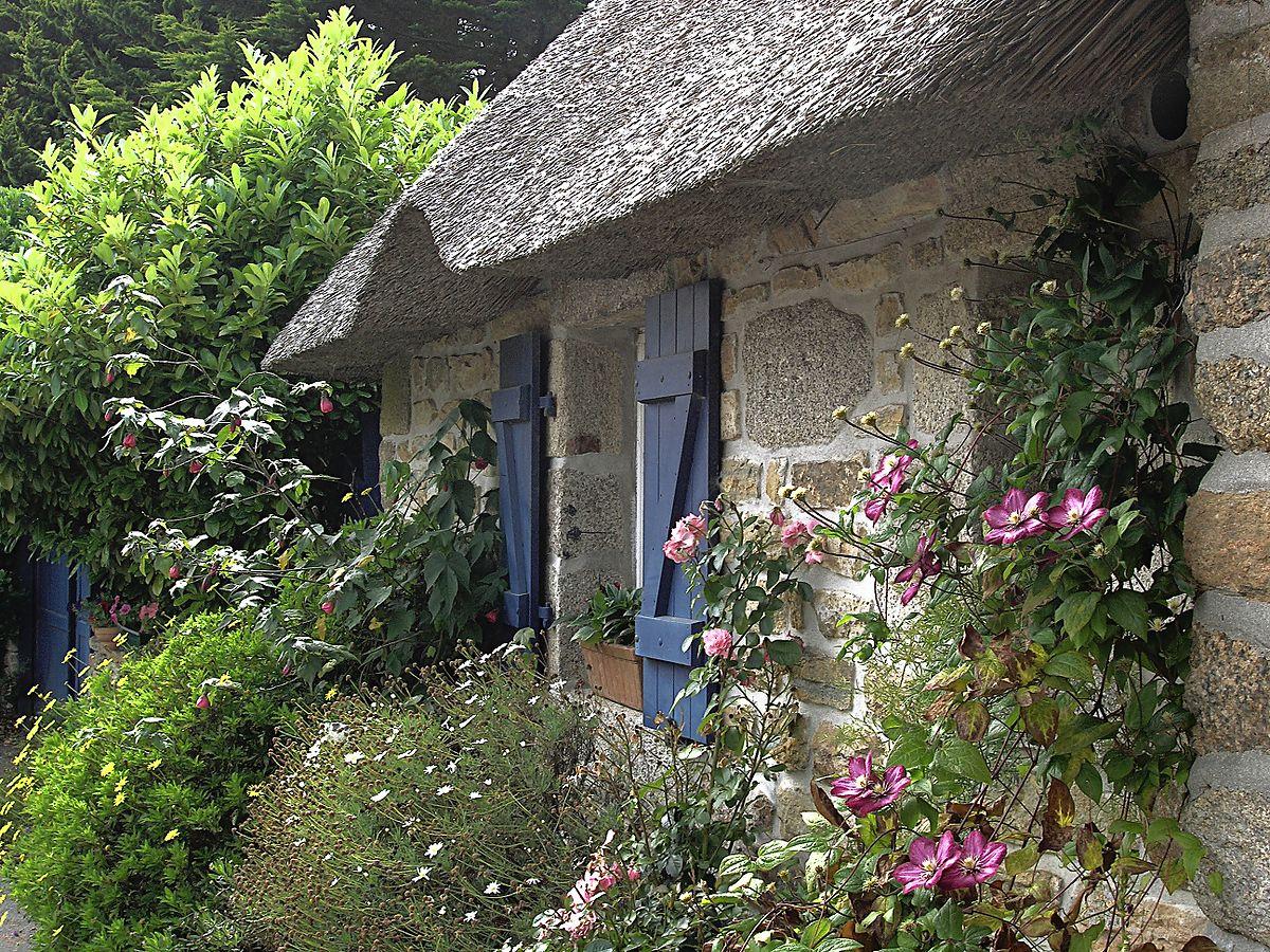 cottage garden - wikipedia ZVEORTX