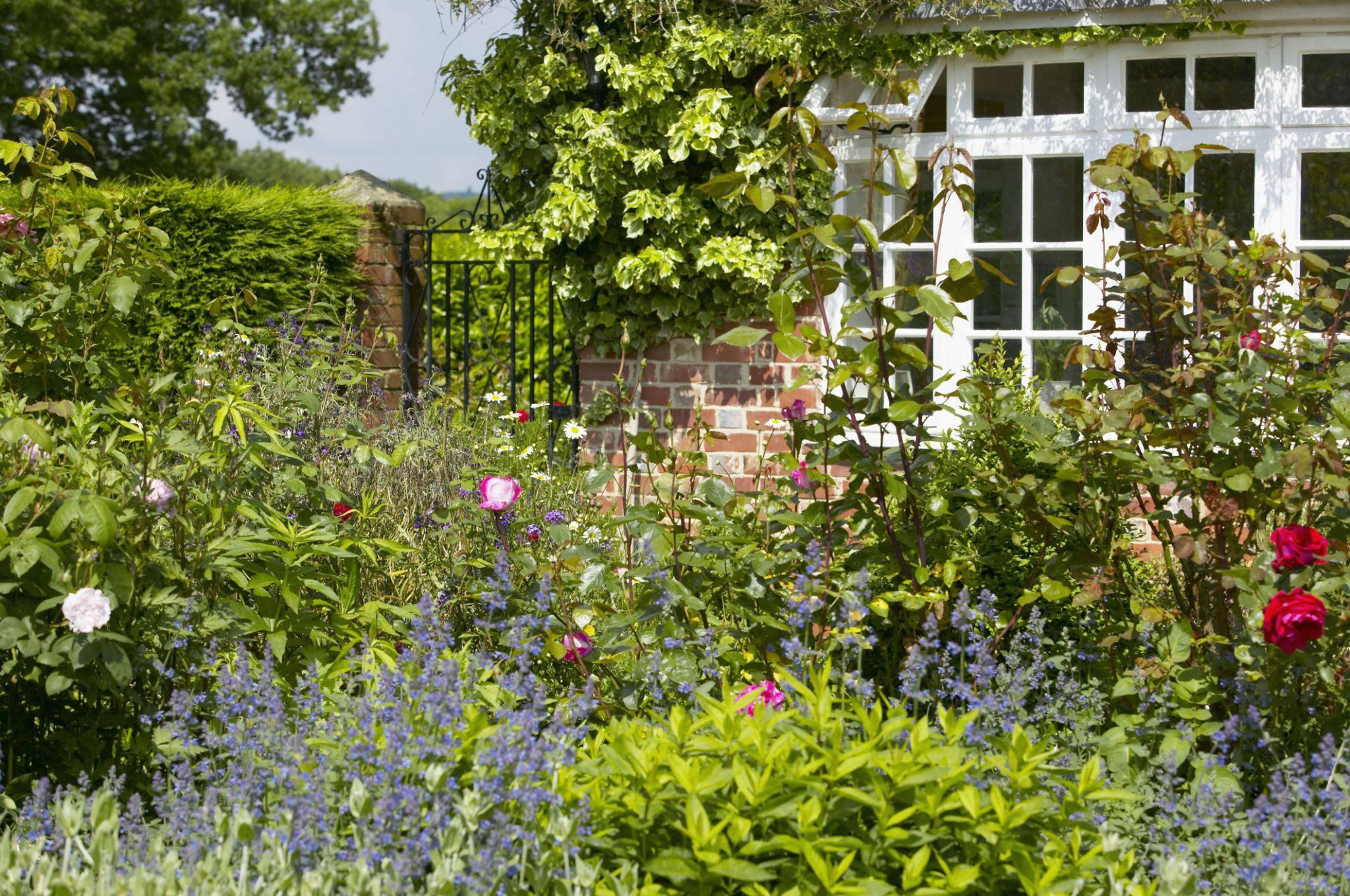 cottage gardens border infront of house with view