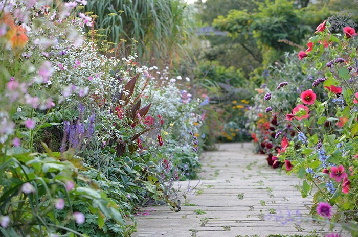cottage gardens william robinson, a victorian iconoclast who invented the idea of the u201cwild QQIRCDD