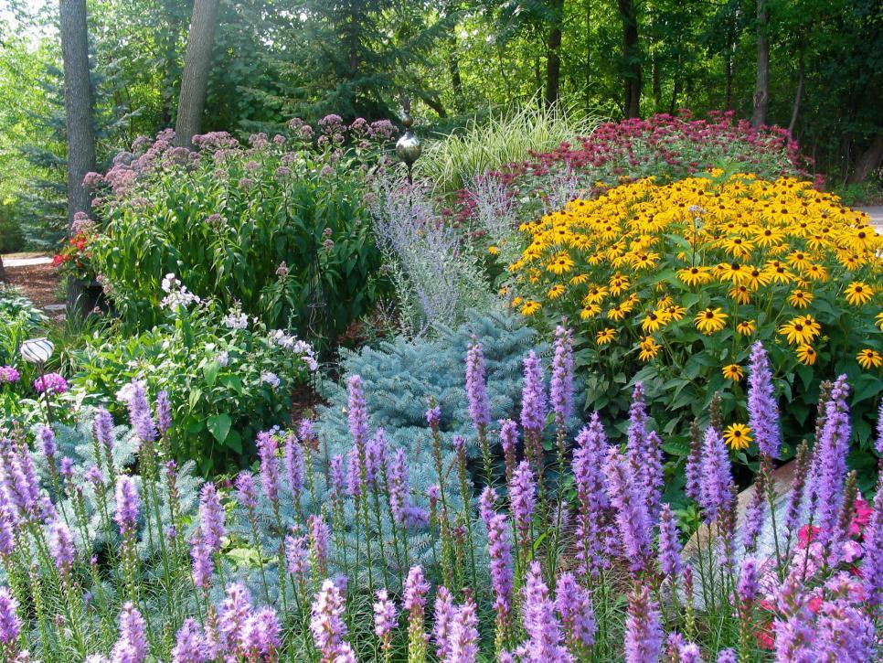 country gardens hgtv2501174-gardens-rms_perennials-minnesota-triciaf_s4x3.jpg.rend.hgtvcom. SZNGCJT
