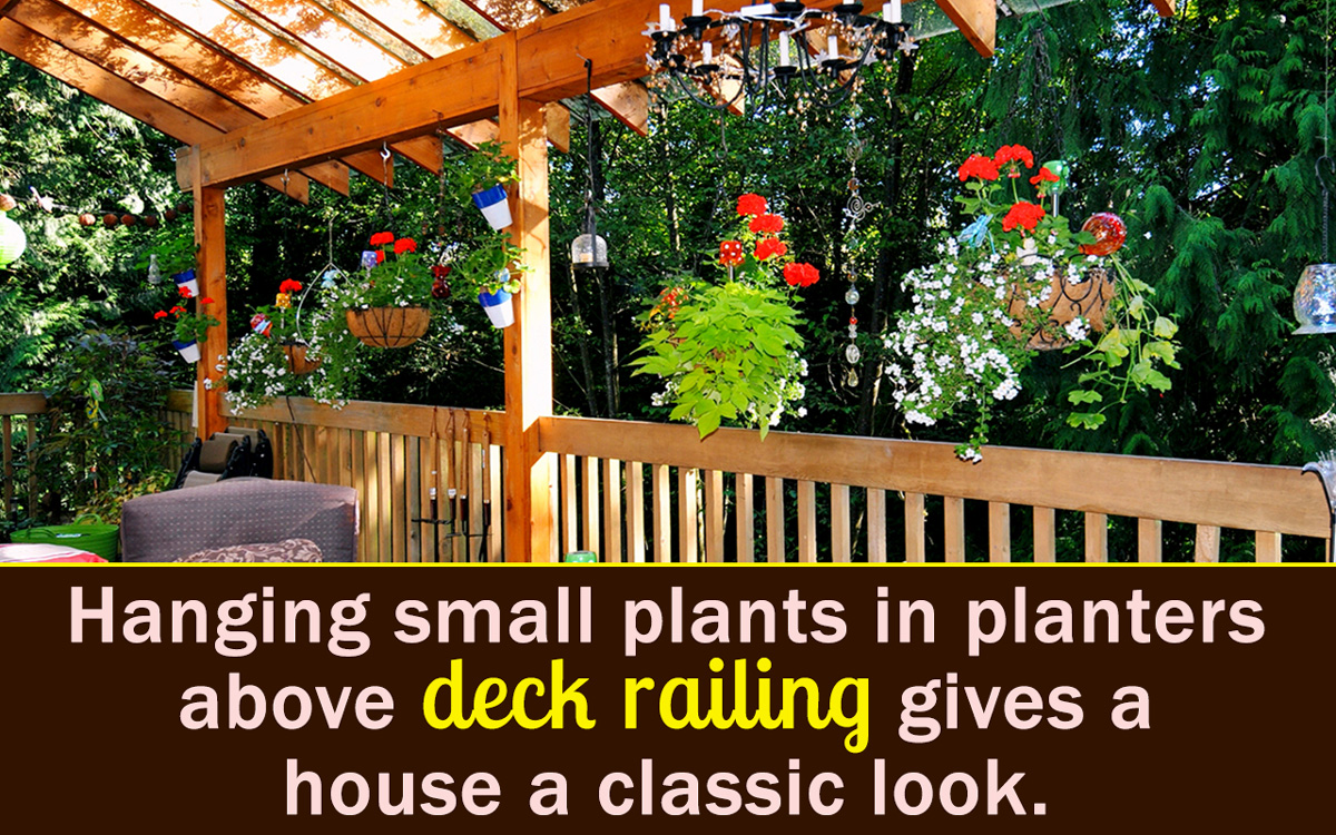 deck planters planning to buy deck railing planters? then read this YMHARIK