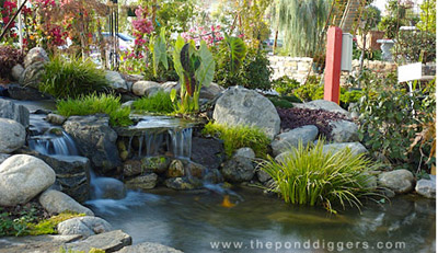 donu0027t break the basic pond design rules or you will pay in BFLTHUB