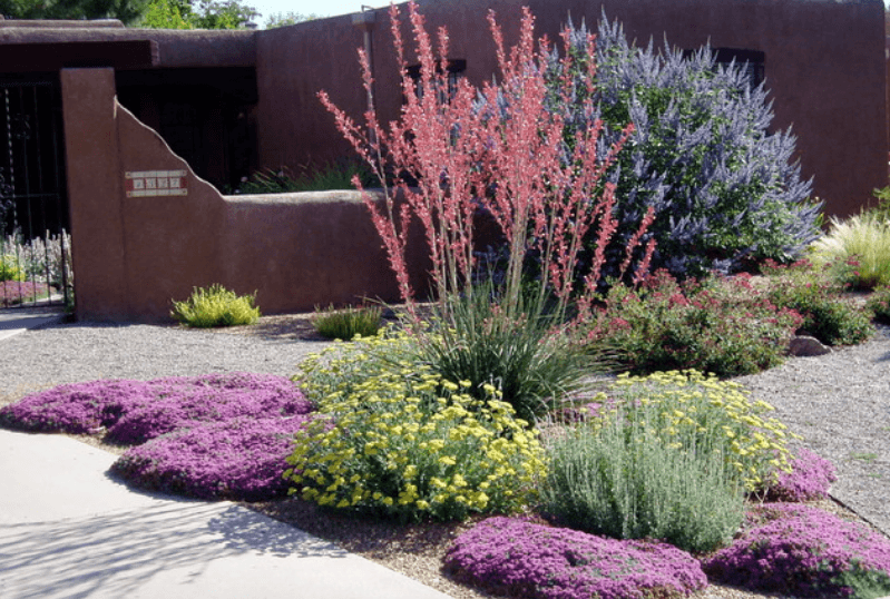 drought resistant landscaping 5 drought-tolerant landscaping ideas for a modern low-water garden -  freshome.com MAHULXR