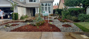 drought resistant landscaping drought tolerant landscaping before drought